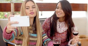 Two Girls Taking Selfie While Holding Wine. Two Pretty Girls Taking Selfie Using Phone While Holding Glasses of Wine at the Cafe stock video
