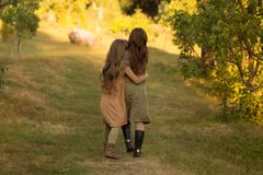 Two girls, teenagers, go on the green grass, embracing. back view stock image