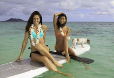 Two girls on their paddle board. With their dog in Hawaii Stock Photo