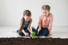 Two girls are thrown the plant for Earth Day Royalty Free Stock Photo