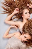Two girls twins, isolated on the grey background Stock Images