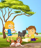 Two girls and two dogs at the park Stock Photography