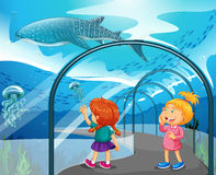 Two girls visiting aquarium Royalty Free Stock Image