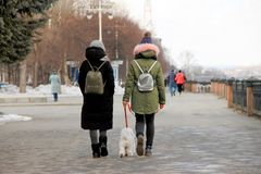 Two young girls walking on the street with a dog dressing on the back backpacks stock photo