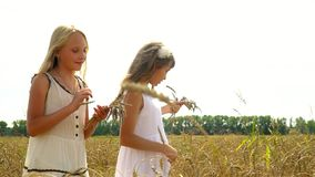 Two girls walk on the gold field of wheat in Russia. Beautiful girls in a white dress go with wheat ears in a hand. On this video you can see as the girl runs stock footage