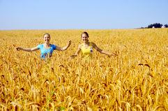 Two girls walk through golden field Stock Photography