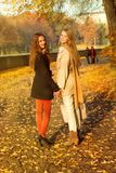 Two girls are walking in the autumn park Royalty Free Stock Photos