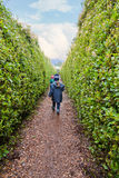 Two girls walking along a maze. Two young girls looking for their way out of a maze stock images