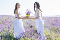 Two girls are walking in lavender field Royalty Free Stock Image