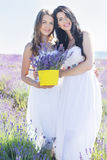 Two girls are walking in lavender field Stock Photos