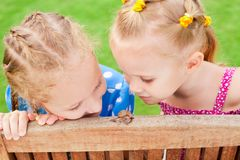 Two girls watching a snail Royalty Free Stock Photography