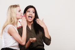 Two girls whispering and smiling, gossip. Relationship gossip. Two women multiethnic whispering secret surprised face expression, studio shot stock photos