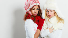 Two girls in winter clothing warm cap. Beauty and fashion. Wintertime concept. Two attractive girls blonde and mixed race in winter clothing warm cap hat. Studio Royalty Free Stock Photo