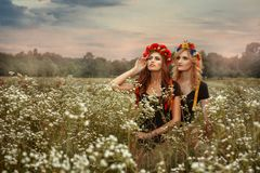 Two girls in wreaths. They stand the field. Royalty Free Stock Image