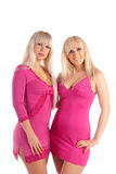 Two glamour blondes Royalty Free Stock Image