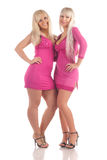 Two Glamour Blondes Royalty Free Stock Photography