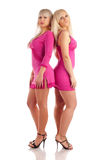 Two glamour blondes Stock Photo