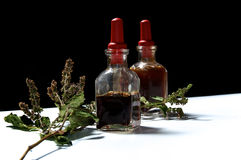 Two glass bottles with herbal extracts and dried patchouli floew Royalty Free Stock Images