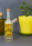 Two glass bottles olive oil stands near a flower against a dark background. Stock Photos