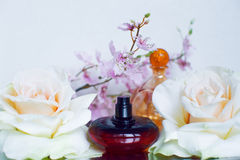 Two glass bottles of perfume Royalty Free Stock Photography