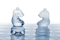 Two glass chess horses. Stock Image