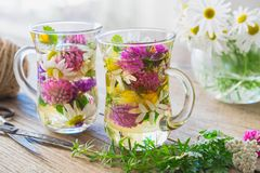 Two glass cups of healthy herbal tea. Medicinal herbs on table. stock photo