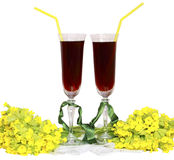 Two glass glasses with wine tubes for a cocktail a Royalty Free Stock Image