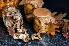 Two glass jars with wild mushrooms on black marble background. Stock Photo
