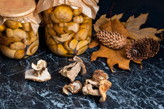 Two glass jars with wild pickled mushrooms and dry white wild mu Stock Photography