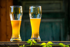 Two glass of light beer Stock Photo