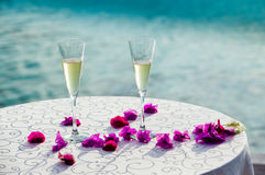 Two glass of white wine Royalty Free Stock Photos