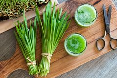 Two glasses of barley grass juice with freshly harvested barley. Grass, top view Royalty Free Stock Photos