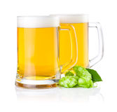 Two glasses of beer with Green hops  Royalty Free Stock Photos