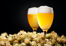 Two glasses of beer with hop Stock Images