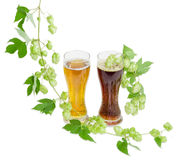 Two glasses of beer and hops branches on light background Stock Images