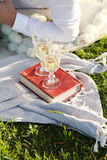 Picnic outdoor royalty free stock photos