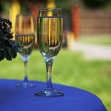 two glasses of champagne. Royalty Free Stock Photography