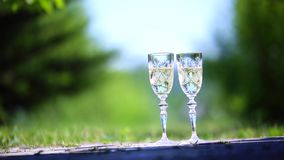 Two glasses of champagne on the grass.  stock video
