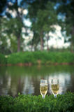 Two glasses of champagne in the grass in nature. Two glasses of champagne in the grass on the background of water and green trees stock photos