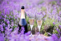 Two glasses of champagne. Royalty Free Stock Photo