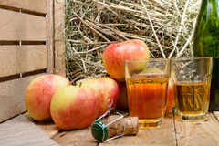 Two glasses of cider with some apples Royalty Free Stock Images