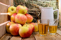 Two glasses of cider with some apples Royalty Free Stock Photo
