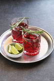 Two glasses of Cranberry cocktail with lime and rosemary garnish Stock Photo