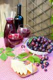 Two glasses of delicious homemade dry red wine with grapes. And cheese. Outdoors still-life. Vertical summertime colored image Stock Photo