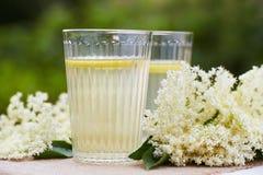 Two glasses of elderflower lemonade Royalty Free Stock Images