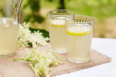 Two glasses of elderflower lemonade Stock Images