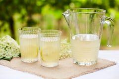Two glasses of elderflower lemonade Royalty Free Stock Photography