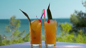 Two glasses of iced fruit drinks on sea background. Vacation time. Slow motion shot of two iced fruit cocktails on the background of waving green trees and blue stock video footage