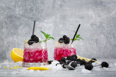 Two glasses of icy cocktails. Cold berry drink. Beverages with mint, lemon citron and blackberries on a frozen white Royalty Free Stock Photo
