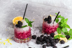 Two glasses of icy cocktails. Cold berry drink. Beverages with mint, lemon citron and blackberries on a frozen white Royalty Free Stock Image